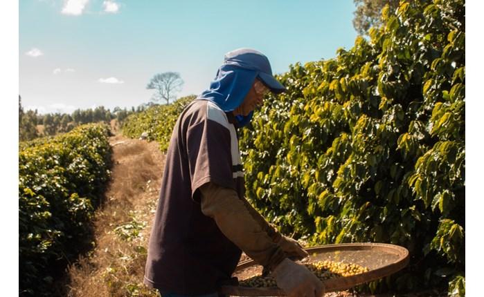 Nespresso: Ταινία μικρού μήκους για τη γέννηση του καφέ της