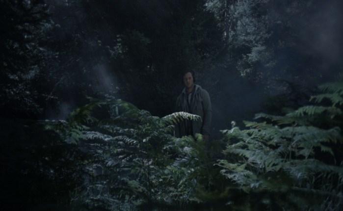 «Σιωπηλό Δάσος»: Η νέα καμπάνια του Αρκτούρου με τον Αντίνοο Αλμπάνη