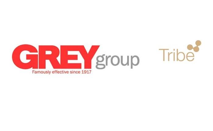 Συμμαχία της Tribe με τη Grey